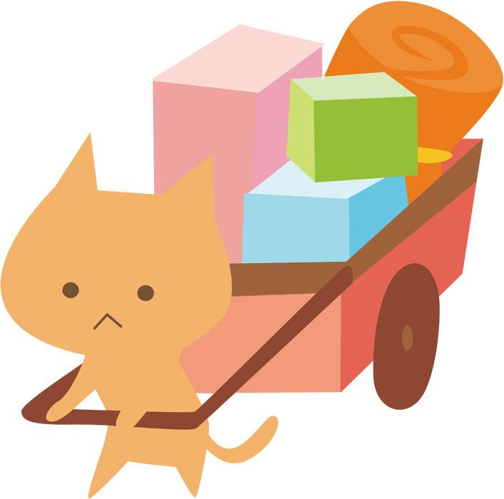 引っ越し猫